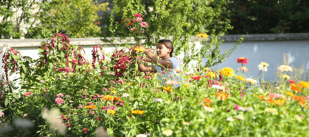 Le champs de fleurs plein air de Masami Charlotte Lavault