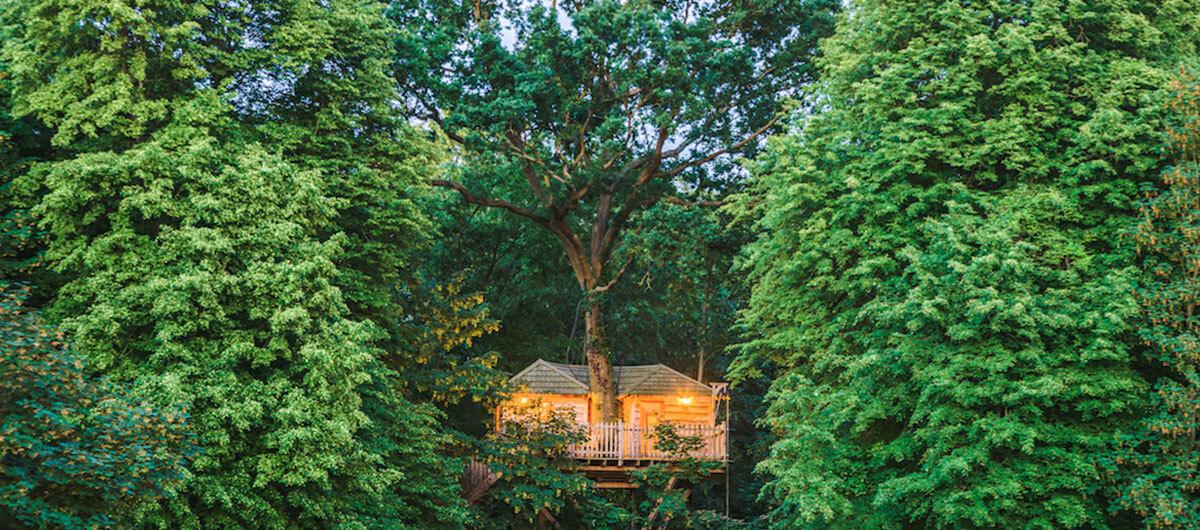 Cabane Coucoo Grand Chene