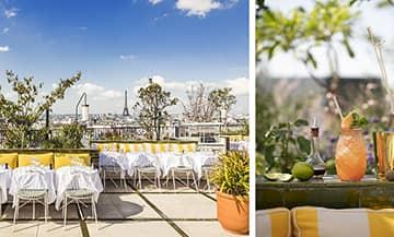Rooftop Perruche