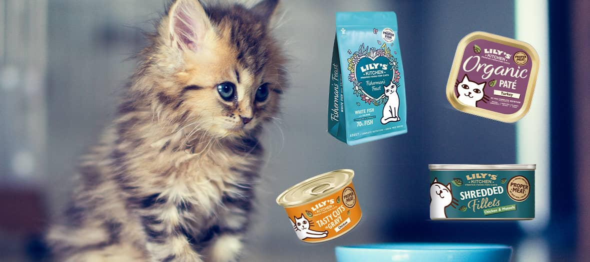 Lily's kitchen range for cats