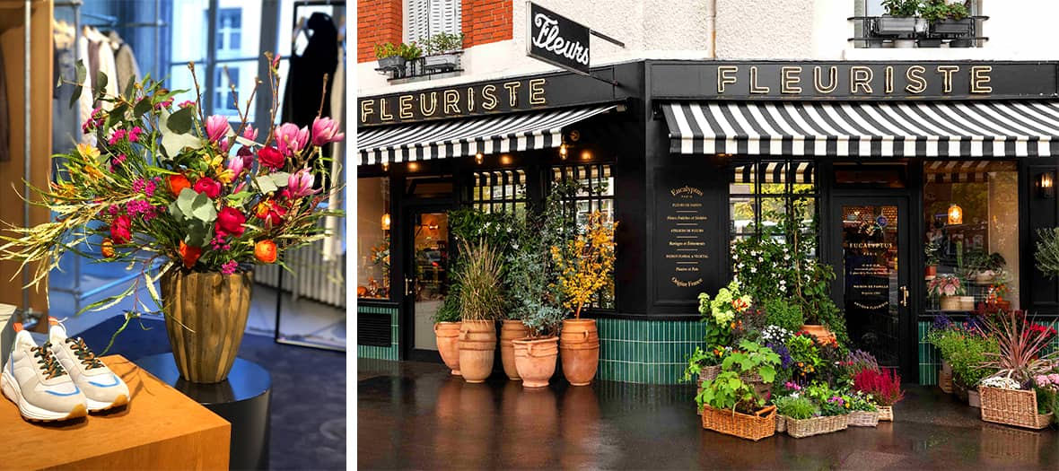 In bouquet, under bells, romantic and singular, these flowers amaze with their beauty and their exquisite scents with varied aesthetics and colors at Eucalyptus Paris