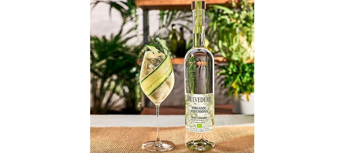Belvedere Poire et Gingembre apporte des notes de fruits verts frais, complétées par de l'agrume et du gingembre épicé.