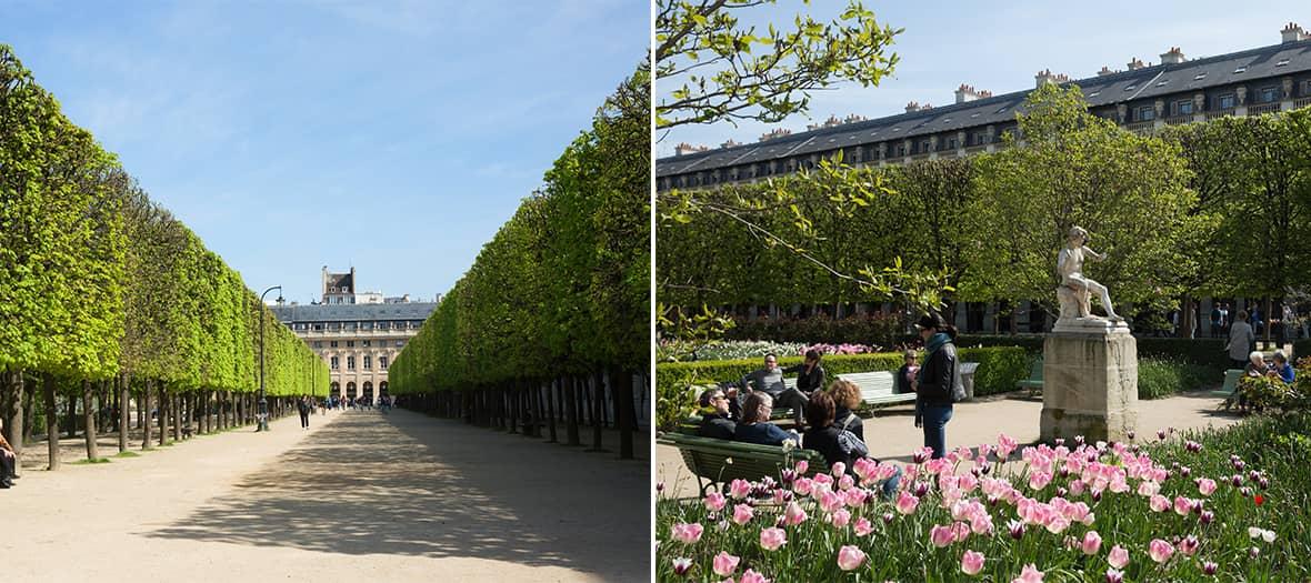 Le Jardin du Palais Royal à Paris