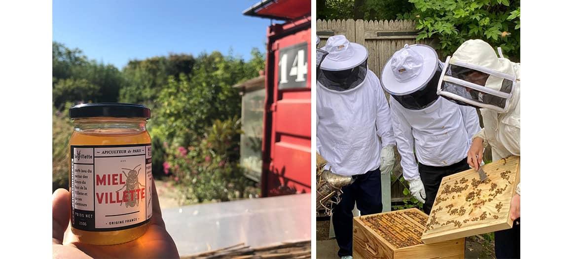 Récolter du miel au parc de la villette