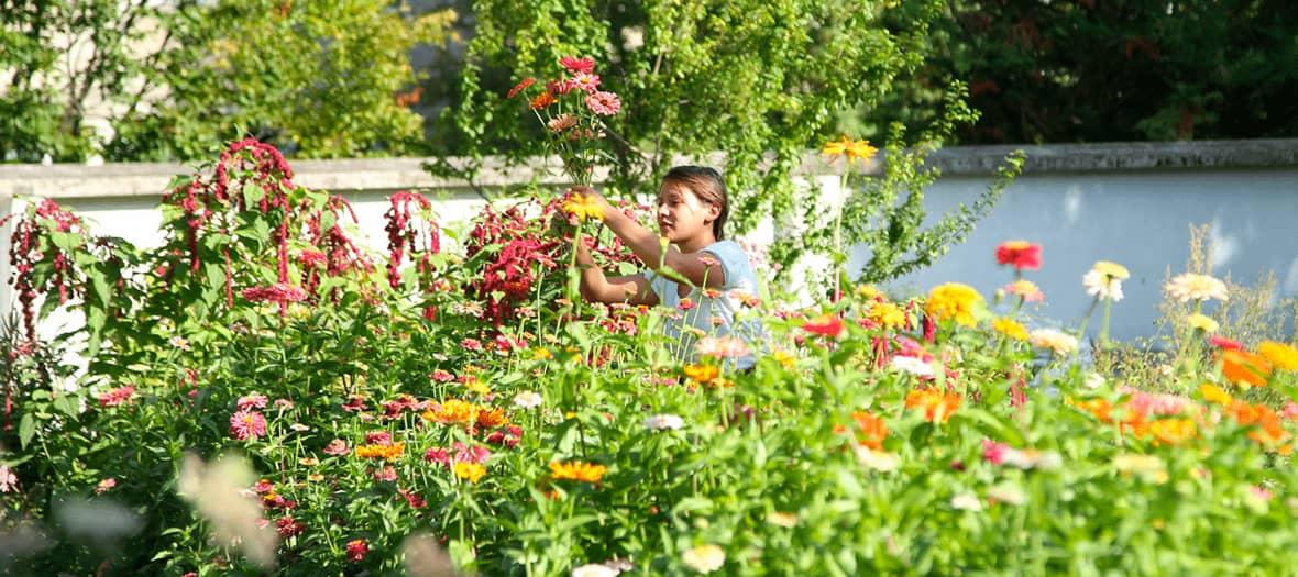 Le jardin de Masami Charlotte Lavault