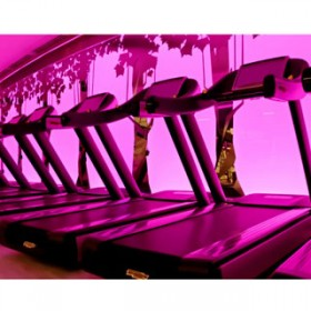 Pure Club Med Gym