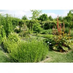Conservatoire national des plantes à parfums