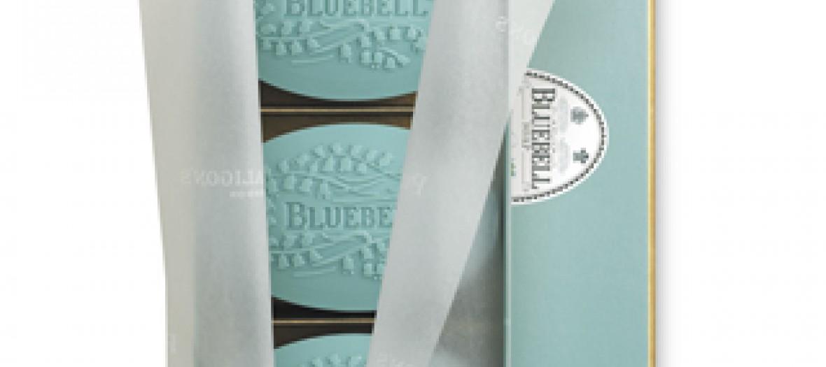 bluebell-320
