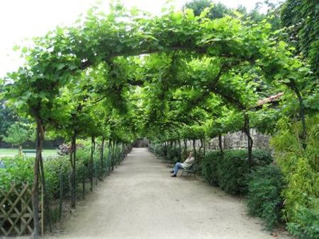 for Le jardin de catherien